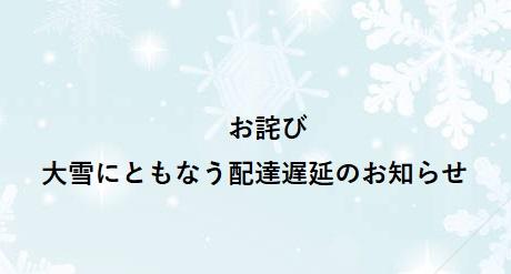 【お詫び】大雪による発送遅延のお詫び(1/12発送分)